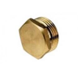 Brass Cap 20