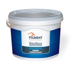 Paint PIGMENT BIELLUX 5L Latex White